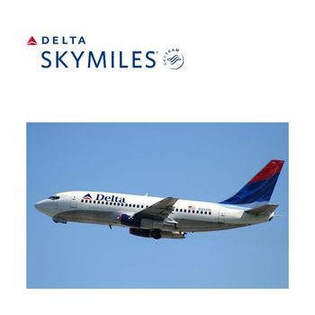 Delta Air Lines – Delta SkyMiles®