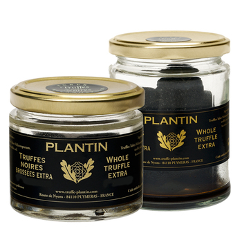 Plantin Whole Black Winter Truffles Extra